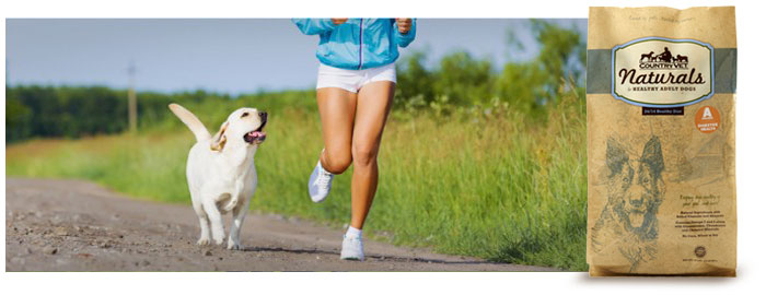 HealthyAdult_Canine-Athlete-700x270