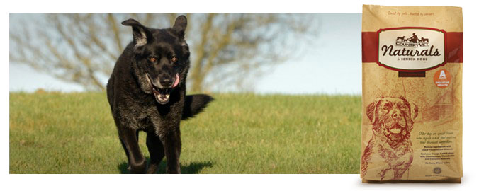 Senior_Canine-Athlete-700x270