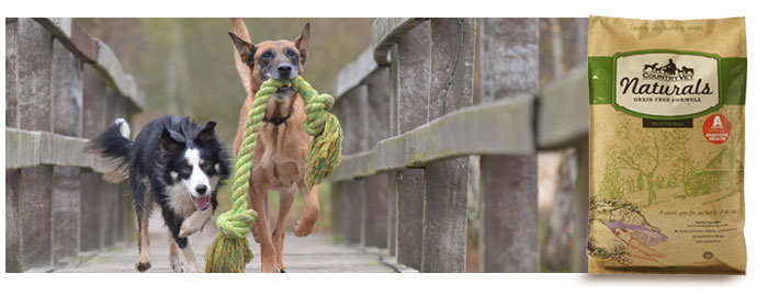 Grain-Free-Dogs-700x270